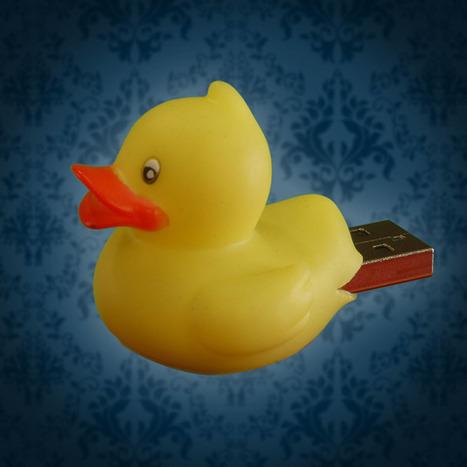 Un canard pirate informatique | Actualité sur la Cybersécurité | Scoop.it