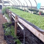 Summer intern and Farm Manager on Robotic Farm in Maryland | Cultibotics | Scoop.it