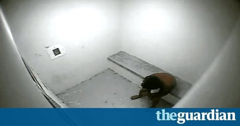 Children in solitary confinement: we must stop treating kids in the system like adults | Anna Copeland | SocialAction2014 | Scoop.it