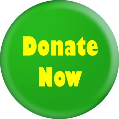 Raising Millions of Dollars for Charitable Causes | Donating to Charities Makes a Big Difference in the World | Scoop.it
