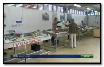 L'Union européenne soutient la création d'un espace de vente directe de poisson | Fonds européens en Aquitaine | Scoop.it
