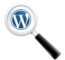 How to Add WordPress Search Form without Search Button | Blogging Tips and Tricks | Scoop.it
