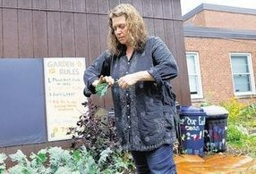 Rondout schools give A+ to gardens - Times Herald-Record   acuaponia,sinergia de hidroponia y acuicultura   Scoop.it