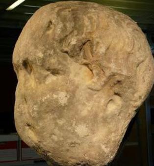 Chichester stone is Emperor Trajan say archaeologists | Histoire et archéologie des Celtes, Germains et peuples du Nord | Scoop.it