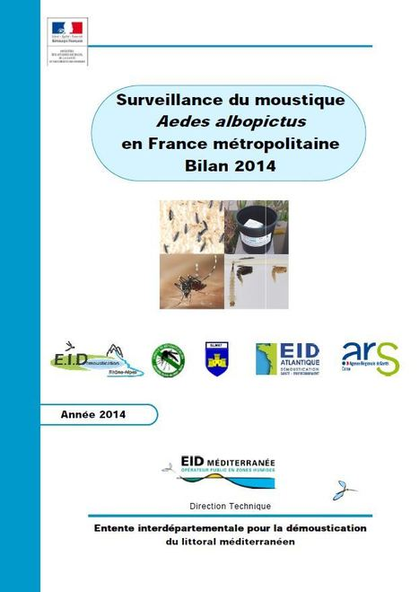 Moustiques vecteurs de maladies - Ministère des Affaires sociales et de la Santé | Insect Archive | Scoop.it