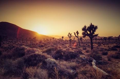 Einmal Wüste und zurück | All about photography | Scoop.it