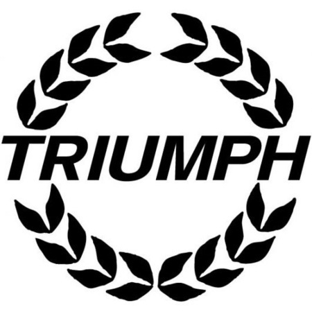 UK-based Triumph bikes focus on 15 percent market share in Indian category of superbike | New Cars | Bikes in India | Scoop.it