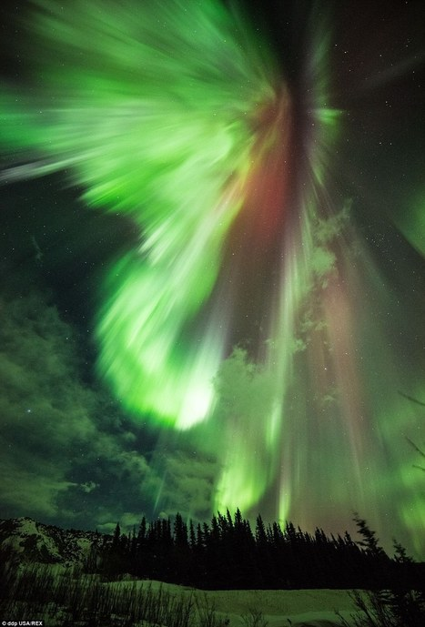 Sensational aurora displays wow crowds across the globe | Everything from Social Media to F1 to Photography to Anything Interesting | Scoop.it