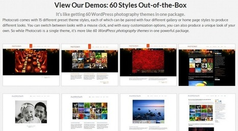 Ultimate Collection of Wordpress Photo Gallery Plugins - Jan' 2013     How To Speed Up Your WordPress Websites Loading Times   Scoop.it