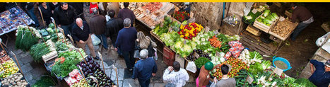 soloSicily Introduces New Street Food & Market Tours | Food and Wine | Scoop.it
