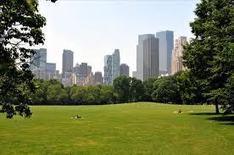 Los 10 parques urbanos más grandes del mundo | Nicolas Veracierta | Rpo... | Scoop.it