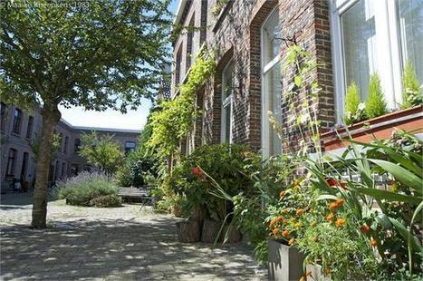 Stadstuinieren nieuwe trend - Dichtbij.nl | Tuinieren | Scoop.it