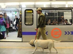 Delhi: Metro may adopt security camera system with artificial intelligence | Social Foraging | Scoop.it