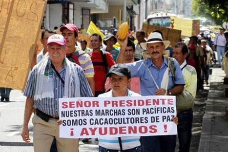 Soulèvement des agriculteurs colombiens: les semences sous les feux de l'actualité - Investig'Action | Lecture citoyenne | Scoop.it