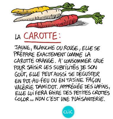 Oubliez les légumes, c'est l'hiver ! | Nutrition | Scoop.it