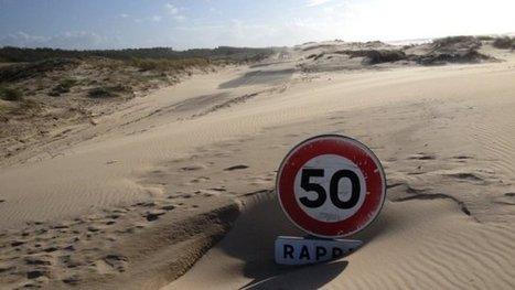 Une dune envahissante – France 3 Aquitaine | Actualités écologie | Scoop.it