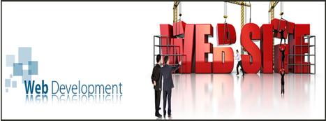 An effective web development company should care about a client's business   Web Development Company   Scoop.it
