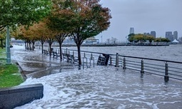 "Scientists predict huge sea level rise even if we limit climate change (""adaptation-only scenario"") 