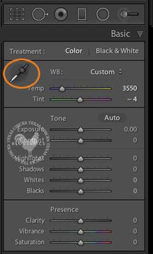 Lightroom Tutorial: 30 Second Snapshot Edit   iTutorials   Scoop.it