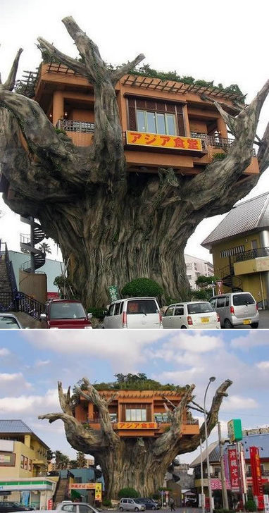 Another 10 Truly Amazing Tree Houses | enjoy yourself | Scoop.it