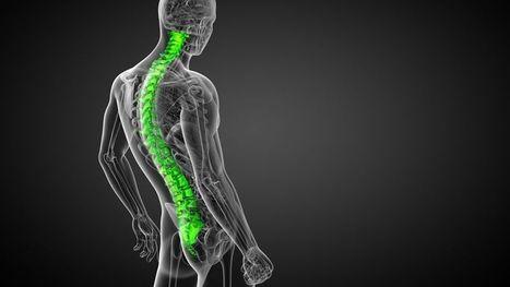 Un bioverre pour régénérer de l'os humain | Vous avez dit Innovation ? | Scoop.it
