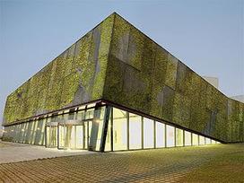 Hormigón Biológico para muros verdes | Jardines Verticales y azoteas verdes. | Scoop.it