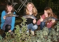 Young trio search for Spanish slugs on BBC's Countryfile | Spanish Slugs | Scoop.it