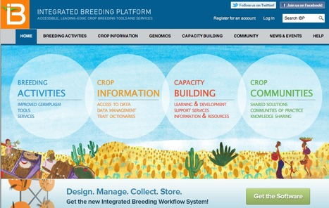 Shawn Yarnes, the PBG Content Coordinator,  is Leaving to join the Generation Challenge Program's Integrated Breeding Platform | FoodFighters | Scoop.it