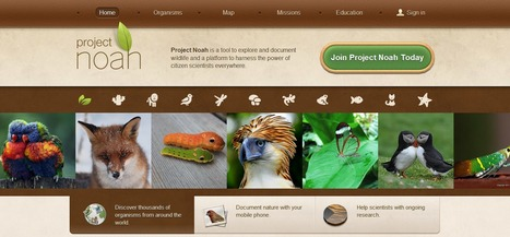 Project Noah | Networked Organisms And Habitats | Time to Learn | Scoop.it