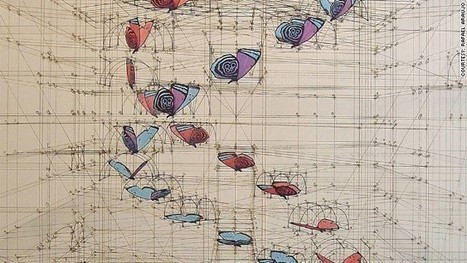 Wildly detailed drawings that combine math and butterflies | STEAM | Scoop.it