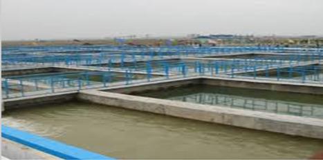 Water Softener Plant Manufacturers in Delhi | sewage treatment plant manufacturers in delhi | Scoop.it