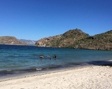 Baja California Sur by Full Belly   Baja California   Scoop.it