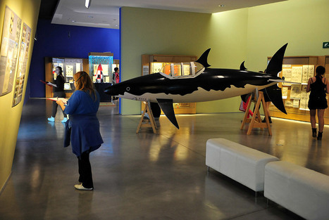Tintin at the museum? The couple overseeing the boy hero's legacy are plotting their next move | Machinimania | Scoop.it