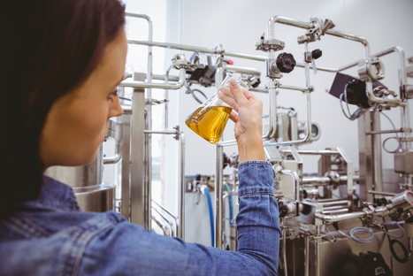 Genetically Modified Yeast Can 'Home-Brew' Morphine - D-brief | It All Begins in Your Mind | Scoop.it