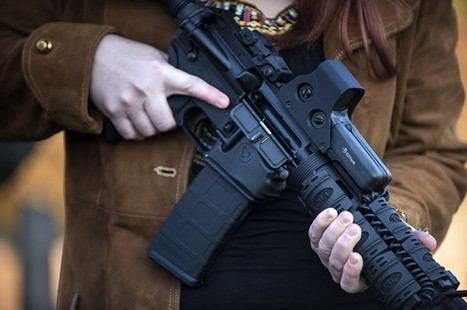 'Orwellian': Proposed Gun Law in Washington State Calls on Police to Inspect the Homes of 'Assault Weapon' Owners | TheBlaze.com | CE | Scoop.it