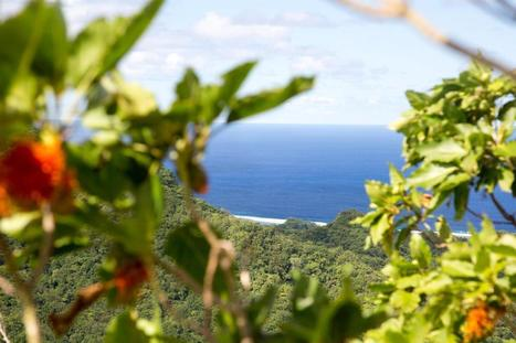 Rarotonga Cross Island Walk | Romantic Tropical Vacations Cook Islands | Scoop.it