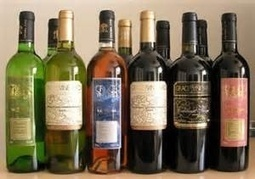 Helping the little guys? Grace Vineyard in China to sell Sonata wine solely via Internet | Champagne.Media | Scoop.it