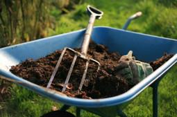 It is possible to grow herbs in a garden | J&A Rubio Landscaping & Maintenance | Scoop.it