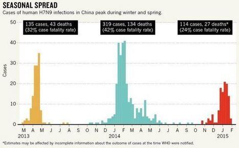 Bird flu mutating in southern China, pandemic threatens | Avian influenza virus A(H7N9) | Scoop.it