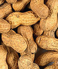 Gradual Exposure to Peanuts May Help Some Allergic Kids – WebMD | Babies And Getting Pregnant | Scoop.it