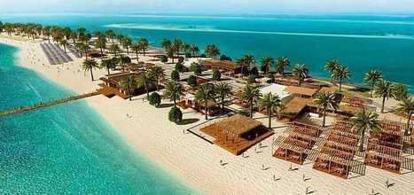 MSC reveals new beach oasis on Sir Bani Yas Island | English speaking media | Scoop.it