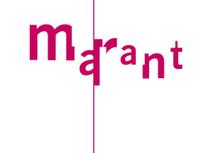 Marant inspiratieavond BREIN EN ONDERWIJS: Waarom ezelsbruggetjes zo goed werken | sociale media | Scoop.it