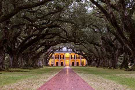 Louisiana Plantations Guide: 12 Louisiana River Road Plantations | Oak Alley Plantation: Things to see! | Scoop.it
