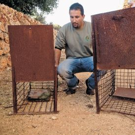 Israeli hunter jailed for first time in 60-year history of anti-poaching law | Wildlife Trafficking: Who Does it? Allows it? | Scoop.it
