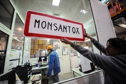 Mobilisation européenne contre la course au brevetage des plantes | Souveraineté Alimentaire | Scoop.it