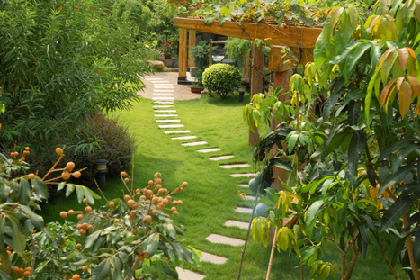 Professional Landscaping Contractor in Gainesville, GA | Empire Landscaping | Empire Landscaping | Scoop.it