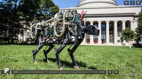 MIT's Robot Cheetah Is No Longer Bound to the Treadmill | 21st Century Innovative Technologies and Developments as also discoveries, curiosity ( insolite)... | Scoop.it