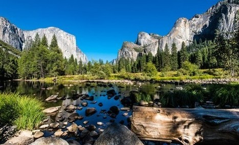 The Effects of Noise Pollution on National Parks and Wildlife   GarryRogers Biosphere News   Scoop.it