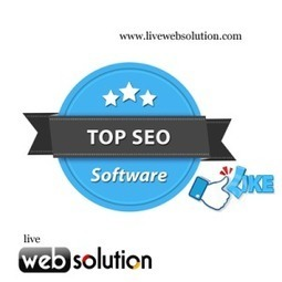 SEO Outsourcing Services Keeps Business Expenses Reasonable | Live Web Solution | Scoop.it