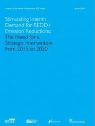 La continuidad del Programa REDD+, en riesgo por falta de financiación | Infraestructura Sostenible | Scoop.it